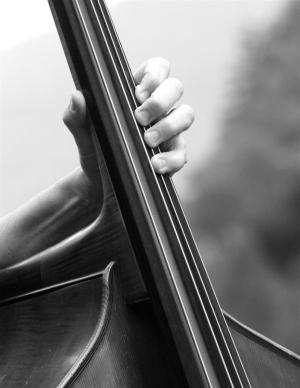 Echoingwalls Music, Music Sense, Double Bass